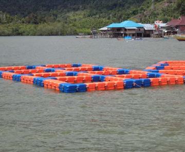 Budidaya Ikan Kerapu di Keramba Jaring Apung (KJA)